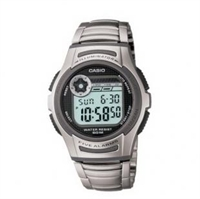 Picture of CASIO   W-213D