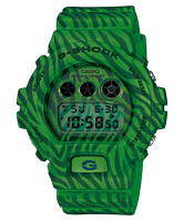 Picture of CASIO G-SHOCK  DW-6900ZB-3