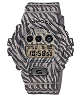 Picture of CASIO G-SHOCK  DW-6900ZB-8