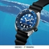 Picture of SEIKO TURTLE Save The Ocean  SRPC91K สีฟ้าน้ำทะเล